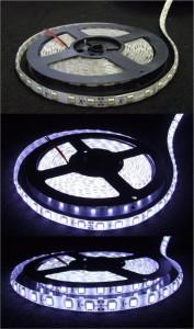 LED pásek bílá 24V ( čip 5050 )