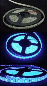LED pásek modrý 24V (čip 5050)