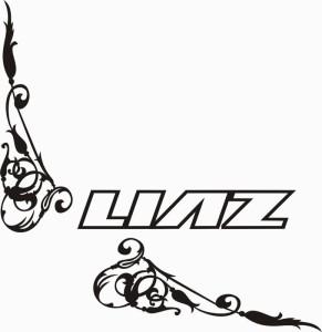 samolepka Dekor LIAZ 604