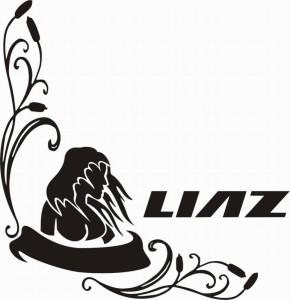 samolepka Dekor LIAZ 619