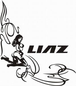 samolepka Dekor LIAZ 624