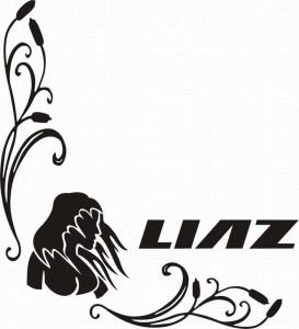 samolepka Dekor LIAZ 626